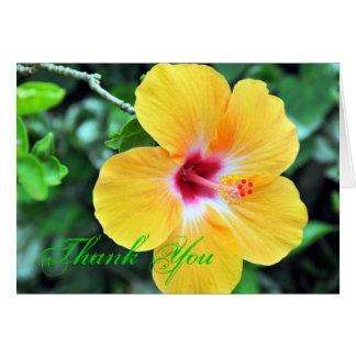 Goldener Hibiskus danken Ihnen Grußkarte