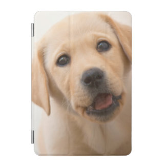 Goldener Labrador-Welpe iPad Mini Hülle