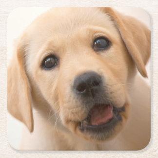 Goldener Labrador-Welpe Rechteckiger Pappuntersetzer