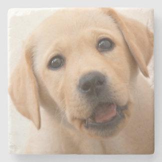 Goldener Labrador-Welpe Steinuntersetzer