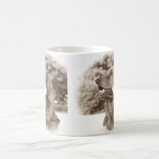 Goldener Retriever des Sepia mit Rose Kaffeetasse