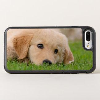 Goldener Retriever-niedlicher OtterBox Symmetry iPhone 8 Plus/7 Plus Hülle