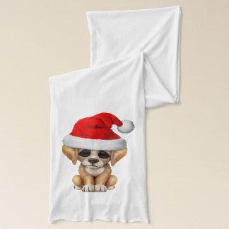 Goldener Retriever-Welpen-Hund, der eine Schal