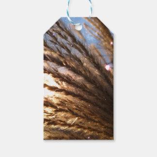 Goldener Weizen-helle Strahlen mit einer Geschenkanhänger