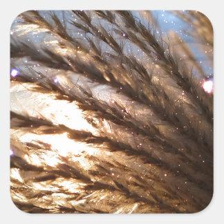 Goldener Weizen-helle Strahlen mit einer Quadratischer Aufkleber