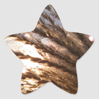 Goldener Weizen-helle Strahlen mit einer Stern-Aufkleber