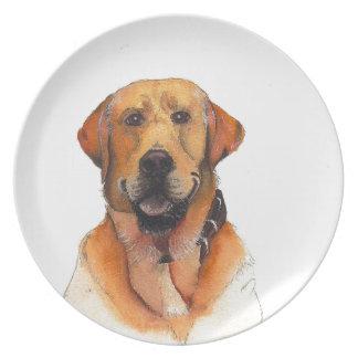 Goldenes Labrador retriever Melaminteller