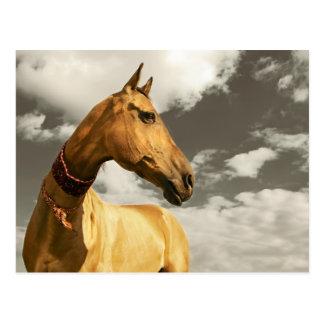 Goldenes Pferd von Turkmenistan Postkarte