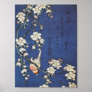 Goldfinch und Kirschbaum, c.1834 durch Katsushika  Poster