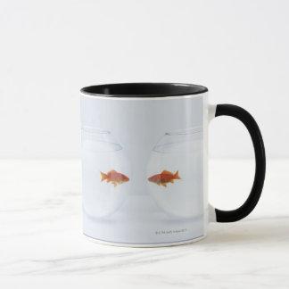 Goldfisch in den unterschiedlichen fishbowls, die tasse