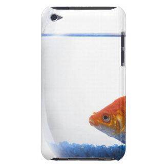 Goldfisch in der Schüssel auf weißem Hintergrund iPod Case-Mate Hüllen