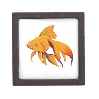 Goldfisch Schachtel