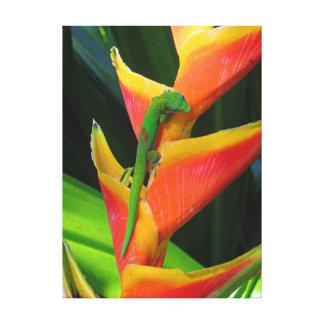 GoldstaubGecko auf Heliconia Leinwanddruck