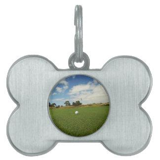 Golfball auf dem Grün, Tiermarke