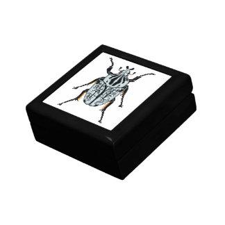 Goliath-Käfer (Single) Kleine Quadratische Schatulle