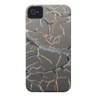 Gorgonian Koralle iPhone 4 Case-Mate Hülle