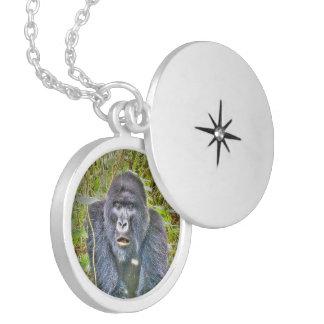Gorilla 715 medaillon