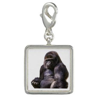 Gorilla-Affen-Affe Foto Charm