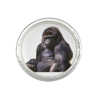Gorilla-Affen-Affe Foto Ringe