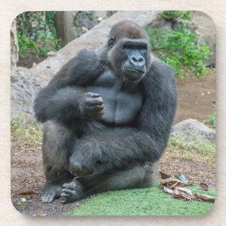 Gorilla an den Zooharten PlastikUntersetzer Untersetzer