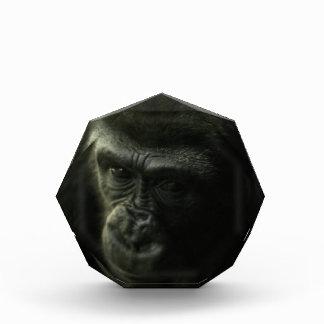 Gorilla Closeup.png Acryl Auszeichnung