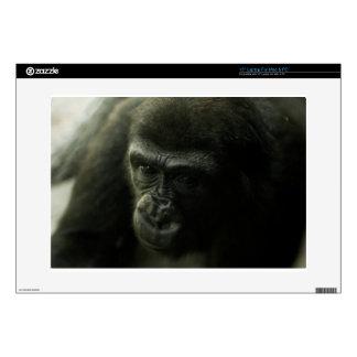 Gorilla Closeup.png