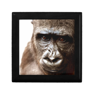 Gorilla Geschenkbox