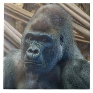 Gorilla-Keramik-Fotofliese Keramikfliese