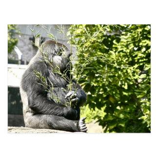 Gorilla mit Blumenstrauß Postkarte