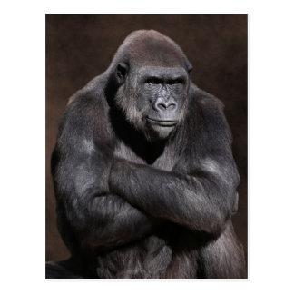 Gorilla mit Haltung Postkarte