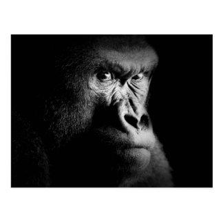 Gorilla Postkarte