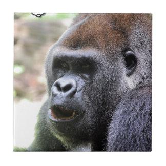 Gorilla sagen fliese