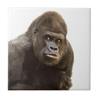 Gorilla-Schellfisch Keramikfliese