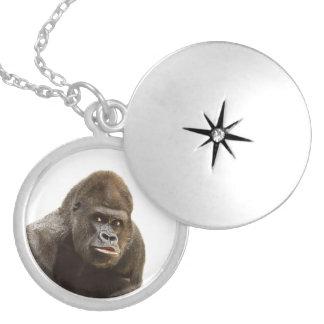 Gorilla-Schellfisch Versilberte Kette