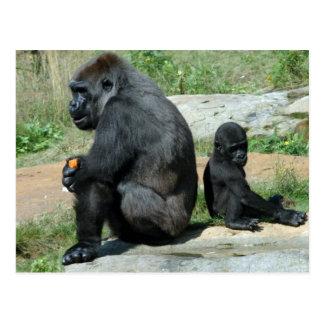 Gorilla-Zeit-heraus Postkarte