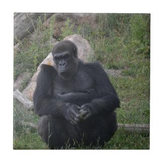 Gorillasitzen Fliese