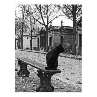 Gotische Friedhofs-Katzenpostkarte Postkarte