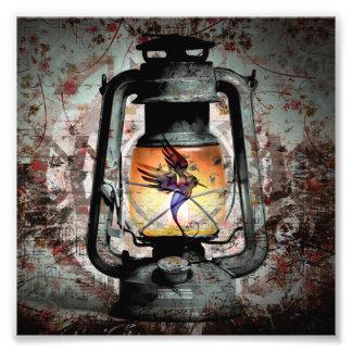 Gotische Kolibri-Laterne Fotodruck