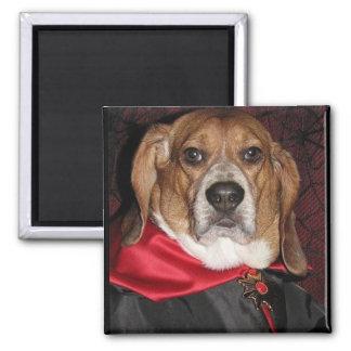 Gotischer Beagle Dogula Magnet Magnets