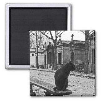 Gotischer schwarze Katzen-Friedhofsmagnet Quadratischer Magnet