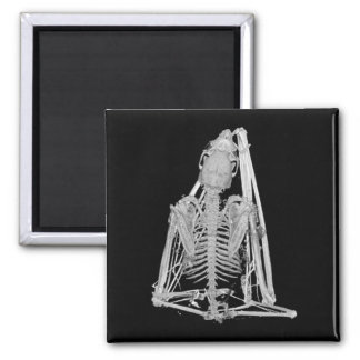 Gotisches Schläger-Skelett Quadratischer Magnet