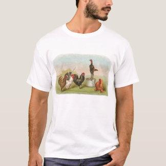 Graham - Gruppe Hühner T-Shirt