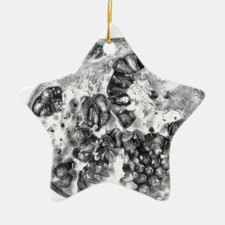 Granatapfel in Schwarzweiss Keramik Ornament