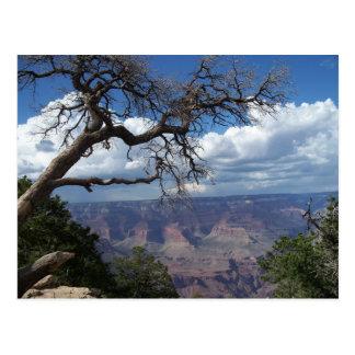 Grand Canyon die gemalte Wüsten-Arizona-Postkarte Postkarte