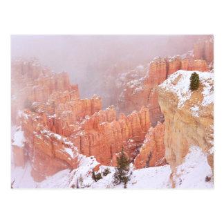Grand Canyon im Schnee Postkarte