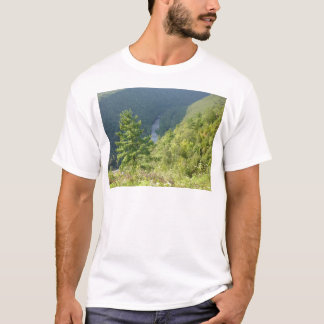 Grand Canyon Pennsylvanias durch Allee Hurley T-Shirt