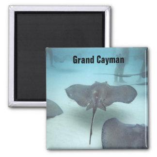 Grand Cayman Inselmagnet Quadratischer Magnet