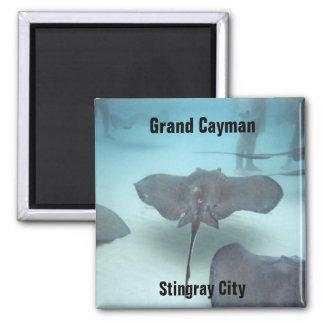 Grand Cayman Magnet Quadratischer Magnet