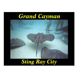 Grand Cayman Stichstrahln-Stadtpostkarte Postkarte