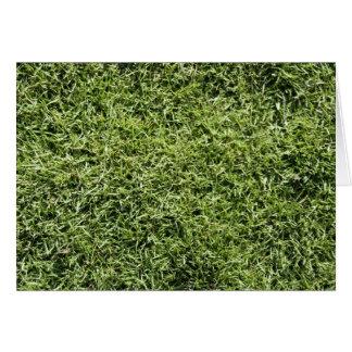 Gras-Beschaffenheit Karte